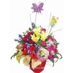 Bunga Rangkaian BURB 20
