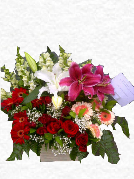 bunga rangkaian cantik
