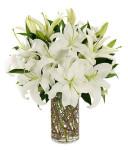 Bunga Ucapan Vas (BUV 06)