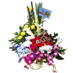 Bunga Anggrek Mawar BURB 52