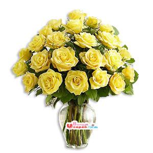 Bunga Mawar Kuning (BUV 33)