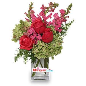 Bunga Vas (BUV 23)