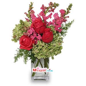 Bunga Vas Gladiol (BUV 23)