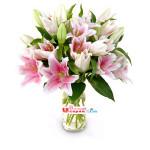 Bunga Vas Casablanka Pink (BUV 22)